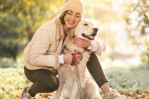 прививки собакам и кошкам